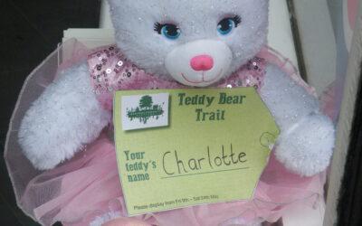 Wanted: Teddy Bear Hosts!